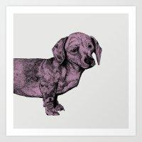 Pink Dachshund Art Print