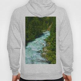 Here Be Bears - Black Bear and Wilderness River Hoody