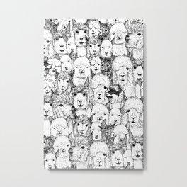just alpacas black white Metal Print