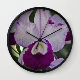 Cattleya Orchid Wall Clock
