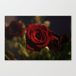 Roses are Red Canvas Print