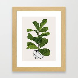 Fiddle leaf fig Tree Framed Art Print
