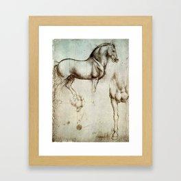 "Leonardo da Vinci ""Gran Cavallo"" Framed Art Print"