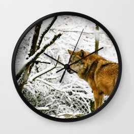 Wolf in the winter snow surrounded by trees Wall Clock