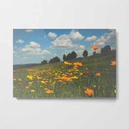 Dreaming in a Summer Field Metal Print