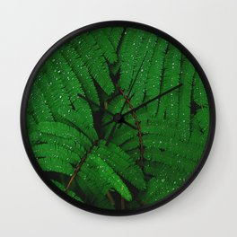 Layers Of Wet Green Fern Leaves Patterns In Nature Wall Clock