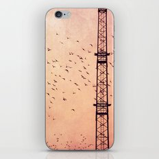 fly..fly.. iPhone & iPod Skin