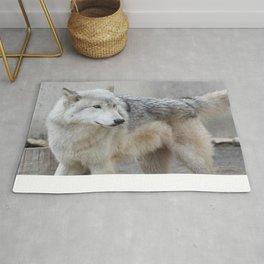 Gray Wolf 2 Rug