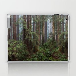 Morning In The Park Laptop & iPad Skin