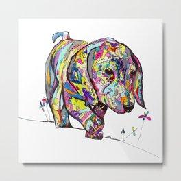 Rainbow Dappled Dachshund Painting Metal Print