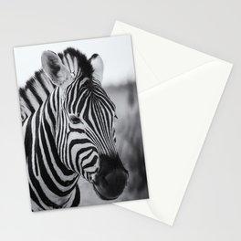 Portrait of a Plains Zebra bw Stationery Cards