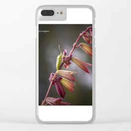 A long way to the top Clear iPhone Case