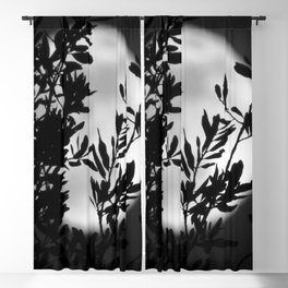 Moon Garden Blackout Curtain