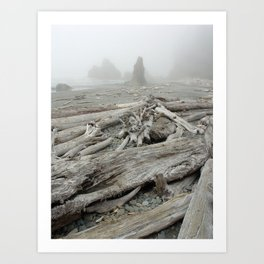 Drift wood Art Print