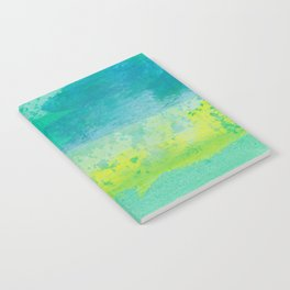 Abstract No. 482 Notebook