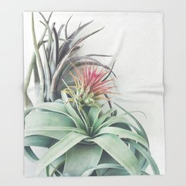 Air Plant Collection II Throw Blanket