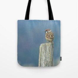 Passerotto-young sparrow Tote Bag