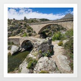 Viaducts Art Print
