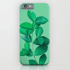 Green Leaves in Green background iPhone 6s Slim Case