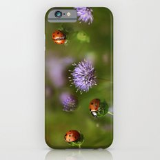 Ladybirds.... Slim Case iPhone 6s
