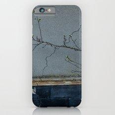 window Slim Case iPhone 6s