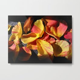 Rose Petals Metal Print