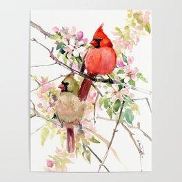 Cardinal Birds and Spring, cardinal bird design Poster