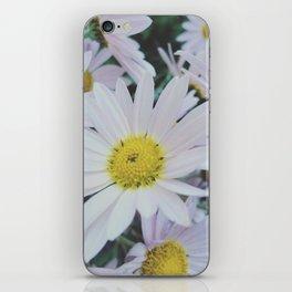 Daisy dream iPhone Skin