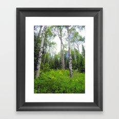 Secret Meadow Framed Art Print