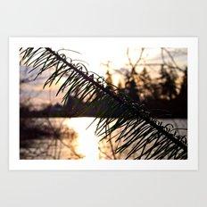 Lakeside sunset Art Print