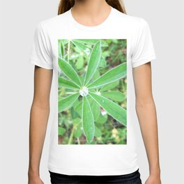 Watercolor Forb, Lupine Leaf 01, Dalvik, Iceland T-shirt