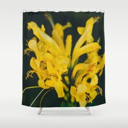 Beautiful yellow flower on black background - Botanical Photography #Society6 Shower Curtain