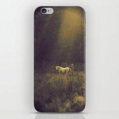 Pale Horse 1 iPhone & iPod Skin