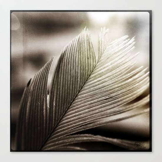 Feather Tip Canvas Print