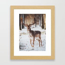 Rustic deer Framed Art Print