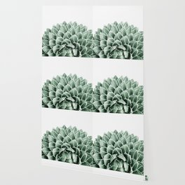 Succulent splendour Wallpaper