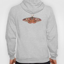 Small Emperor Moth (Saturnia pavonia) Hoody