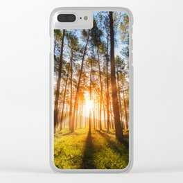 sunset behind trees in forest landscape - nature photography Clear iPhone Case