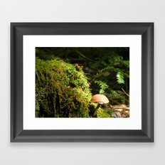 Mushroom chimney Framed Art Print