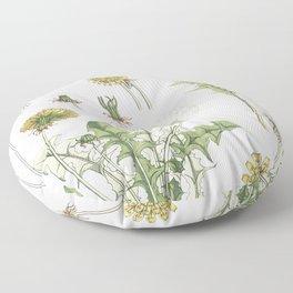 Pissenlit (dandelion) from La Plante et ses Applications ornementales (1896) illustrated by Maurice Floor Pillow