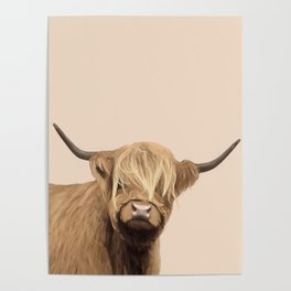 Cream Highland Cow Poster