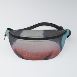 Rudy Fanny Pack