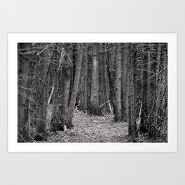 compression path Art Print