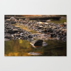 Little stream Canvas Print