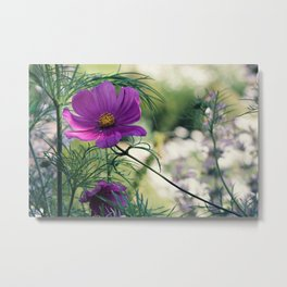 Cosmos and Bokeh Metal Print