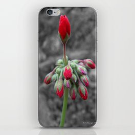 Geranium iPhone Skin