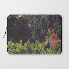 Surveying the Garden Laptop Sleeve