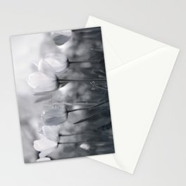 Pure Glow Stationery Cards