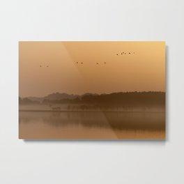 Cranes at sunrise Metal Print