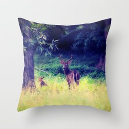 Morning in the Meadow Throw Pillow